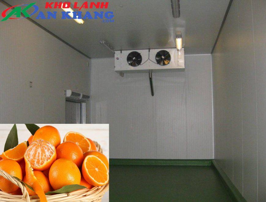 Lắp đặt kho lạnh bảo quản cam uy tín