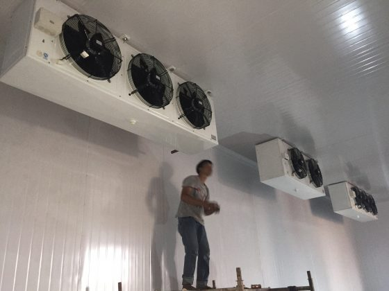 Nhận sửa chữa kho lạnh tại TP.HCM