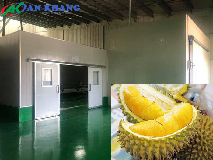 Cung cấp, lắp đặt kho lạnh bảo quản sầu riêng tại Tiền Giang