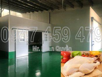 Lắp đặt kho lạnh bảo quản thịt gà